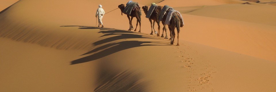 The Sahara, Morocco (March 2016)
