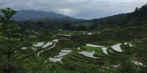 Guizhou Province, China (May 2017)