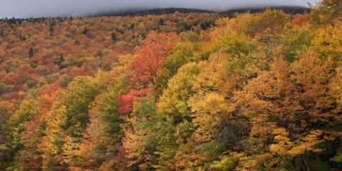 Autumnal New Hampshire (October 2021)